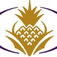 Logo for Dr. Kathy S. Sanders, DMD