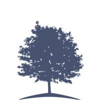 Logo for Dr. Nicholas R. Hein, DDS, Springfield Dental Care