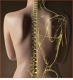Downtown Chiropractic & Massage Therapy
