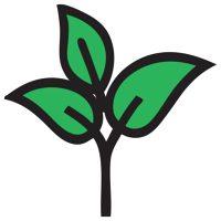 Logo for Life Bloom Dental