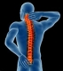 North Raleigh Chiropractic