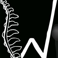 Logo for Wiseman Family Chiropractic, LLC