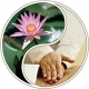 Healing Hands Therapies
