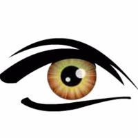 Logo for Optic Gallery Sahara