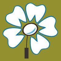 Logo for Smiles-R-Us - Fremont