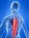 Wellness Within Chiropractic