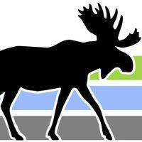 Logo for Moose Lake Dental